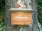 """Briefkasten im Wald sozusagen """"Waldpost``"""