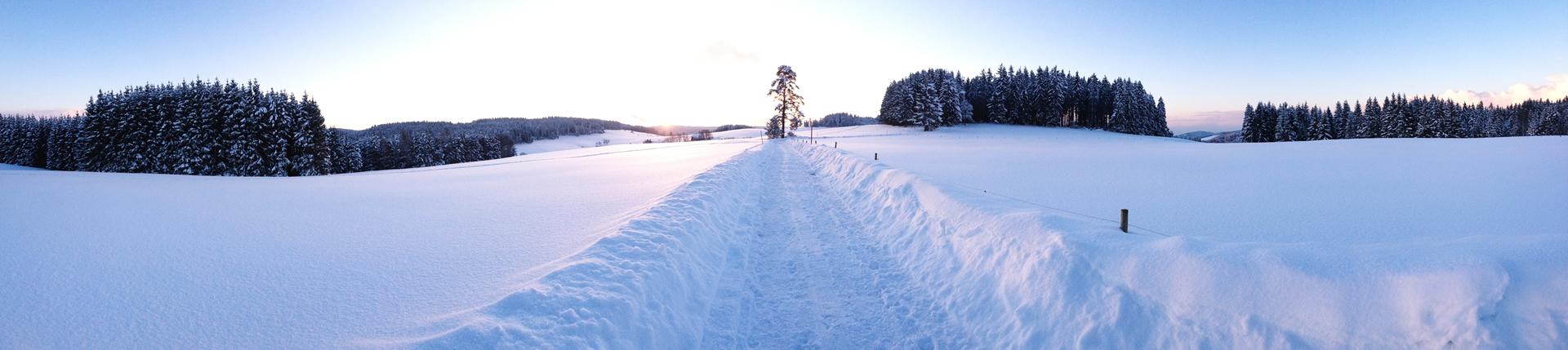 Brigach im Schwarzwald