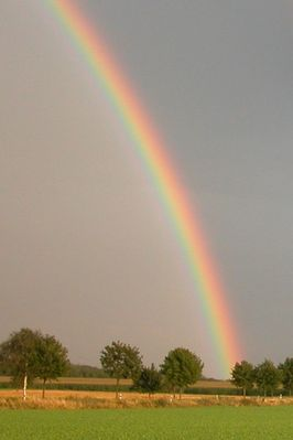 Bright colored rainbow