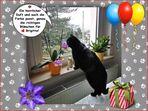 Brigitte hat Geburtstag