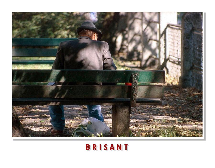 """Brisant"" oder ""Danke - beschhheiden!"""