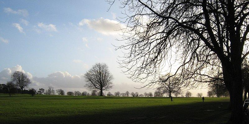 Bristol - Clifton Down Park