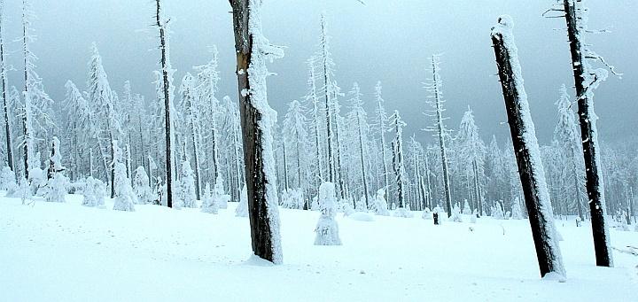 Brocken - eine Mondlandschaft zum Ende des Winters ...