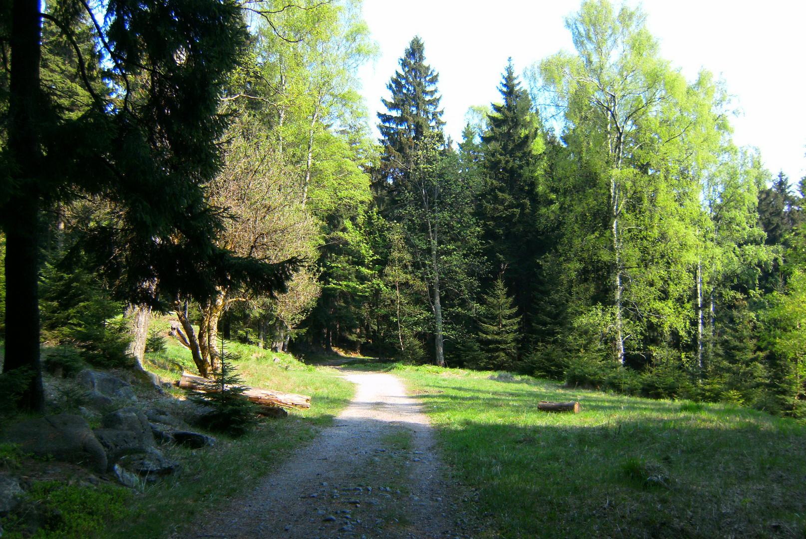 Brockenwanderweg