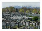 brooklyn cemeteries -3