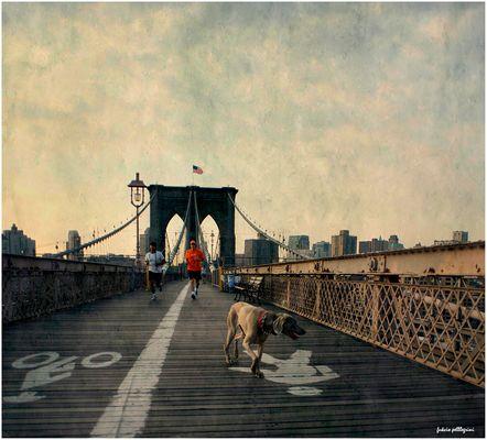 Brooklyn runners