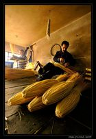 ...broom maker...