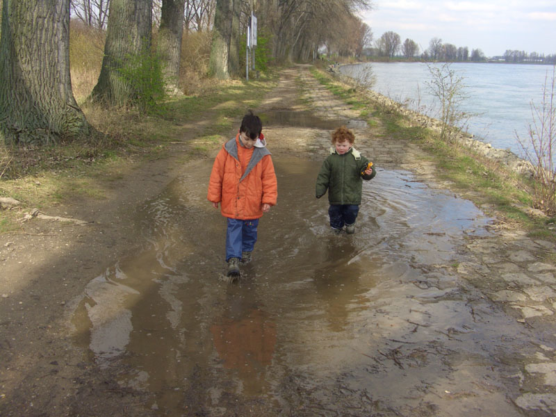 Brothers in puddles
