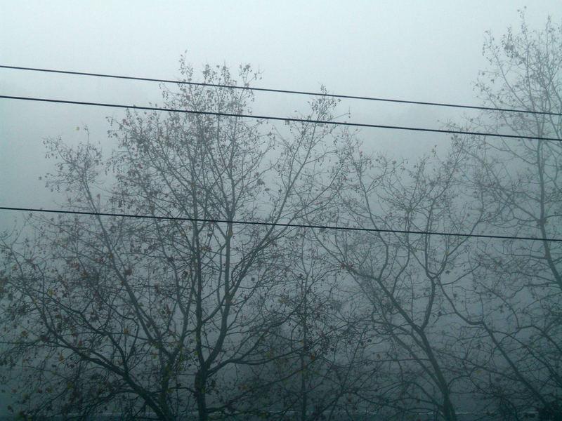 brouillard...