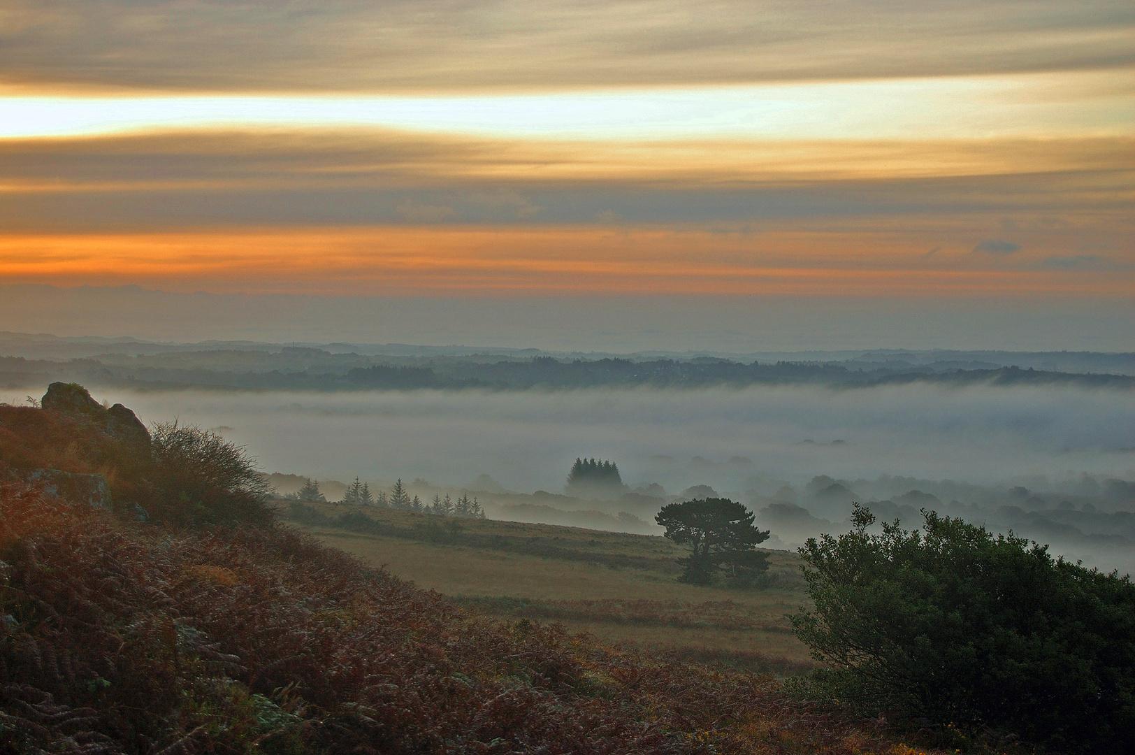 Brouillard en Bretagne