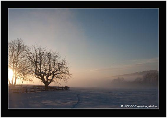 Brouillard et coucer de soleil