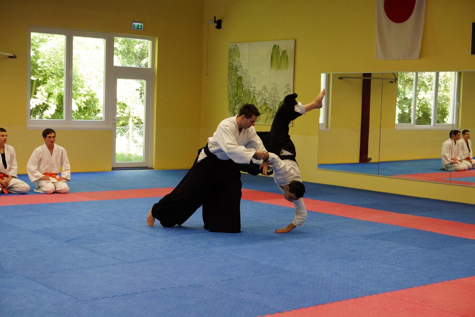 Bruchsaler Budo Club-Aikido3