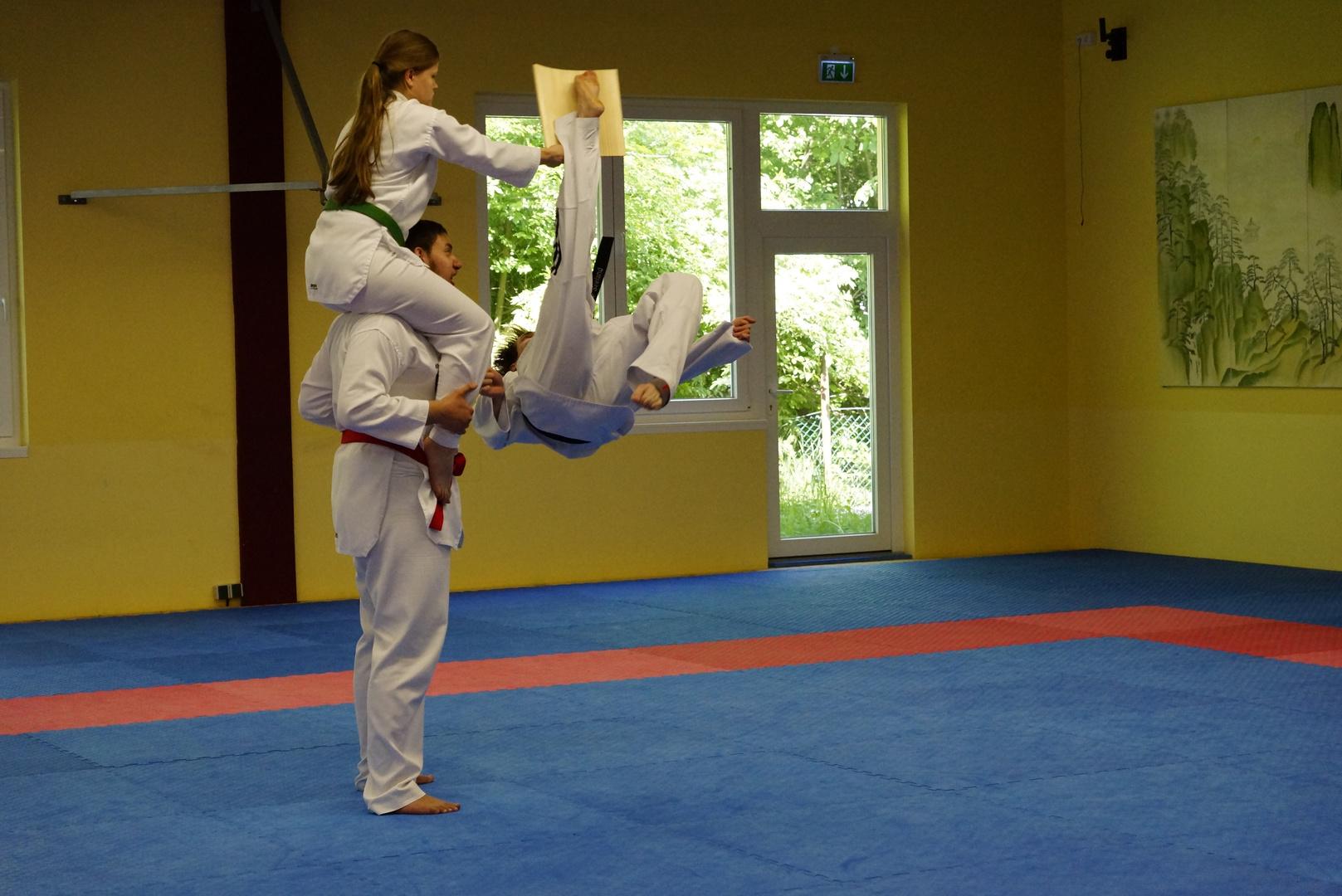 Bruchsaler Budo Club-Taekwondo