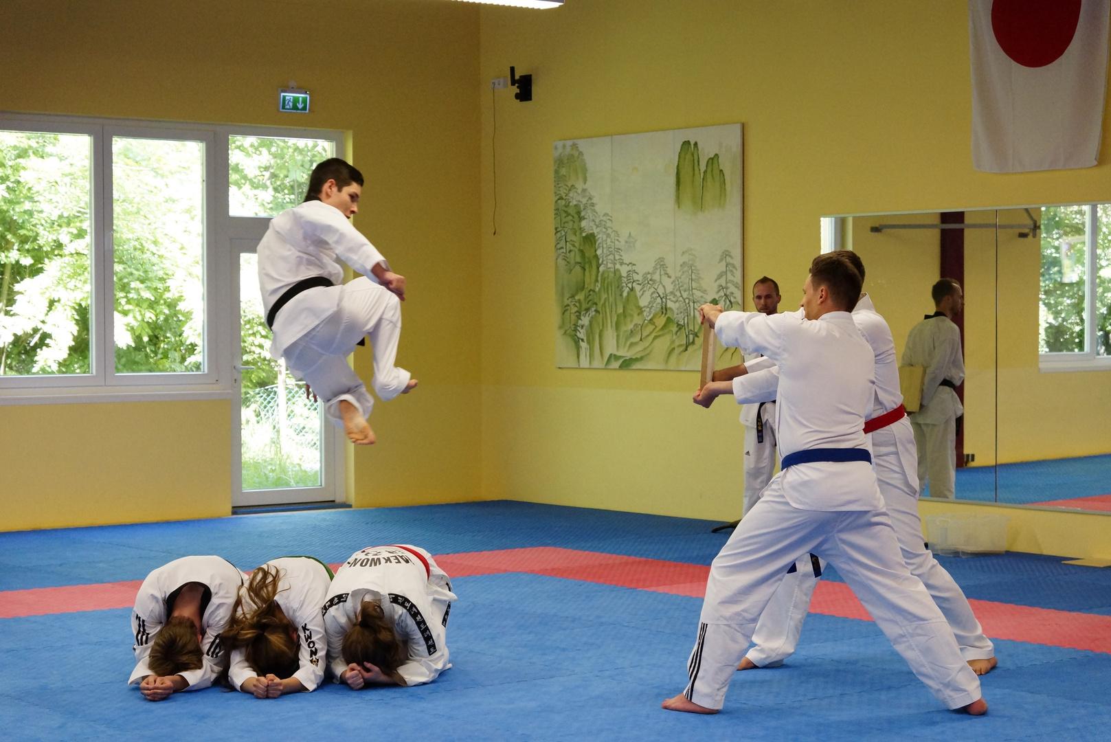 Bruchsaler Budo Club-Taekwondo2