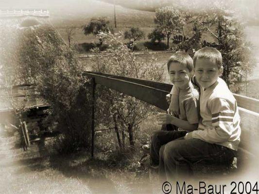 Bruder + Bruder = Freunde (immer ?)