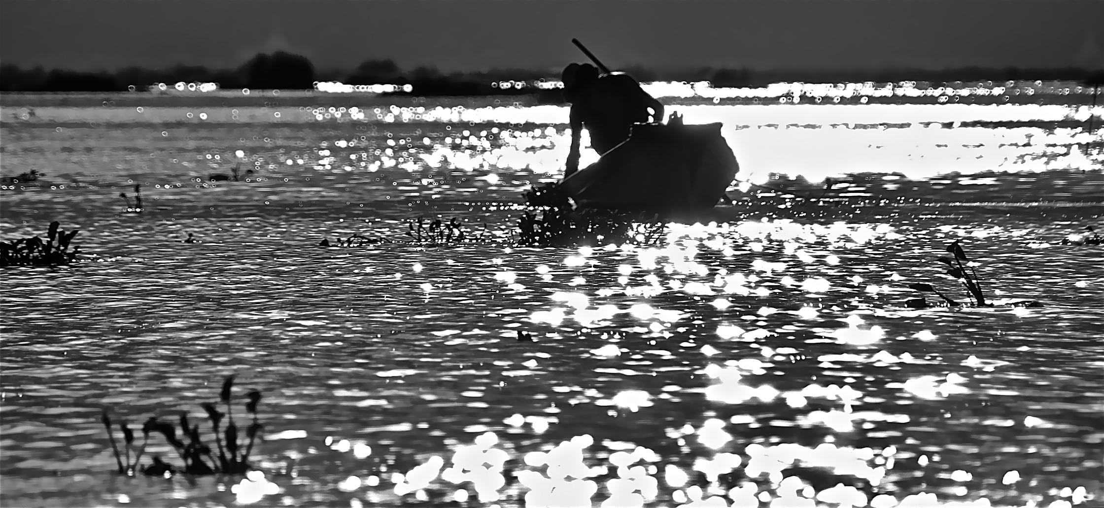 bruder sonne und der fischer