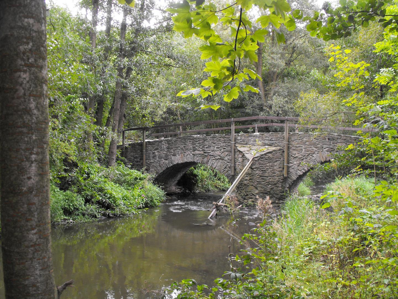 Brücke am Eisenhammer in Weida / Thüringen