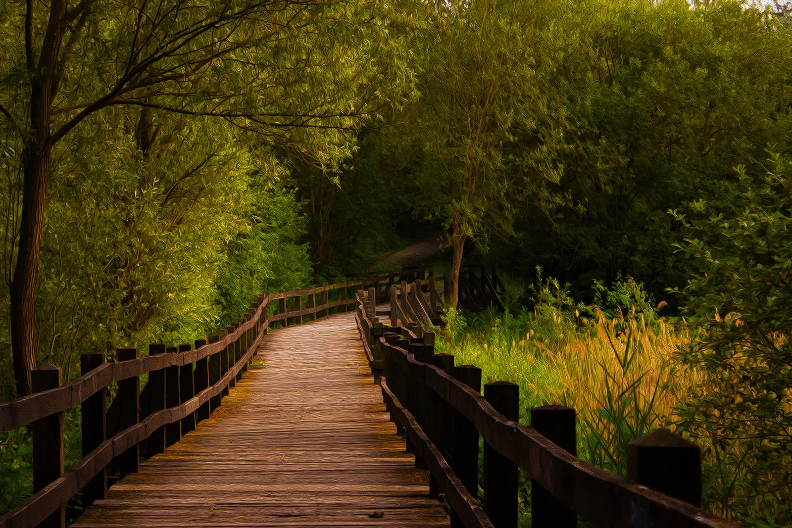 Brücke am grünen See