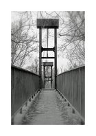 Brücke im Auwald
