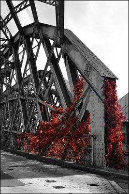 Brücke im Dresdner Hafen