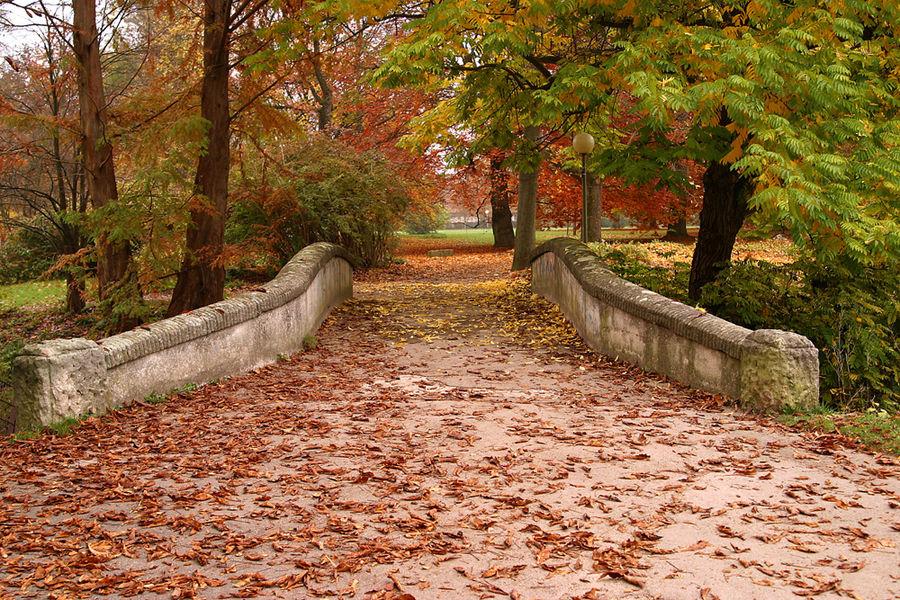 Brücke im Herbst