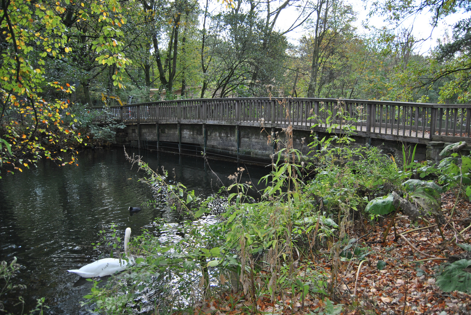 Brücke im nirgendwo