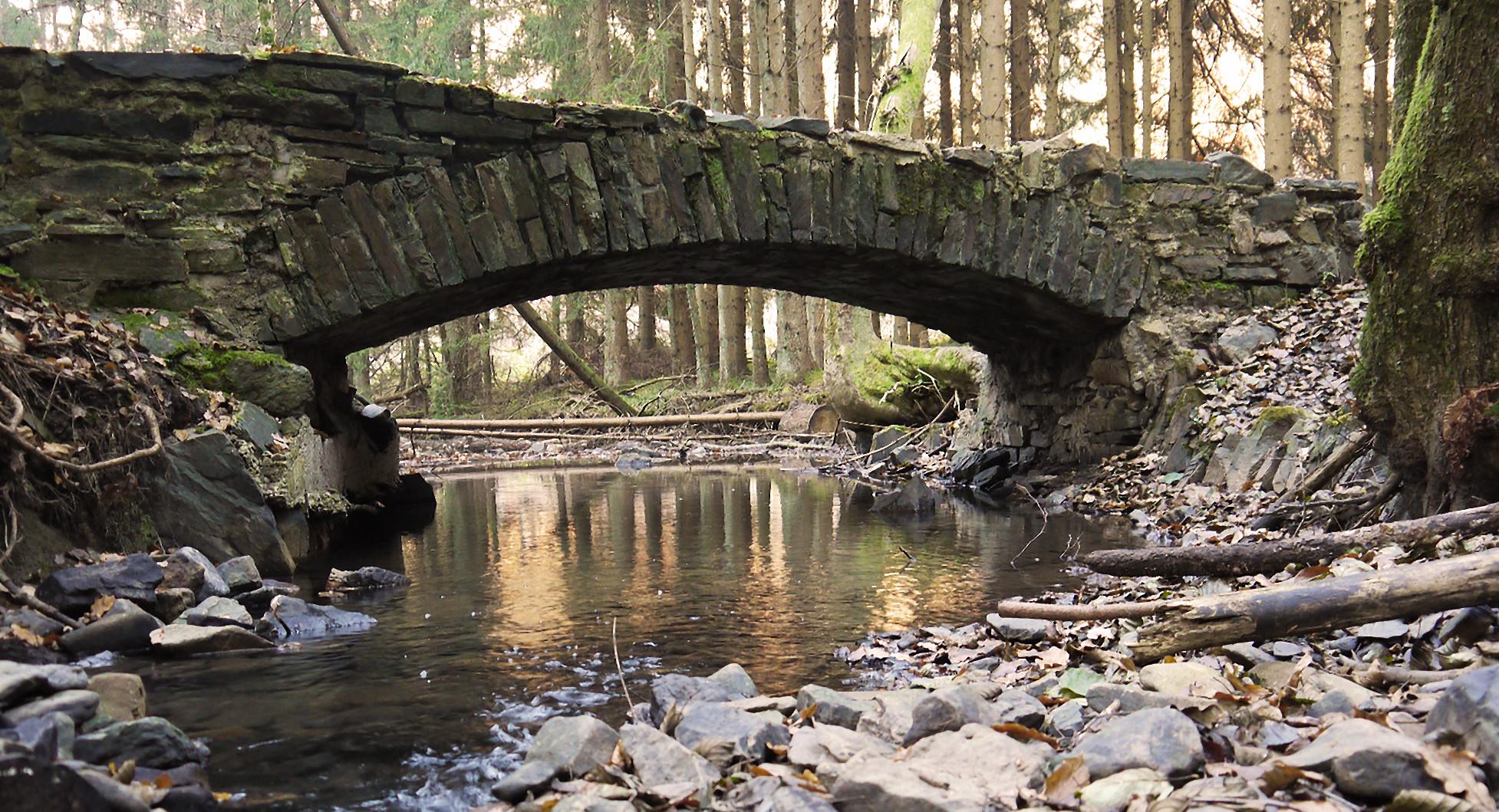 Brücke im Wald neu