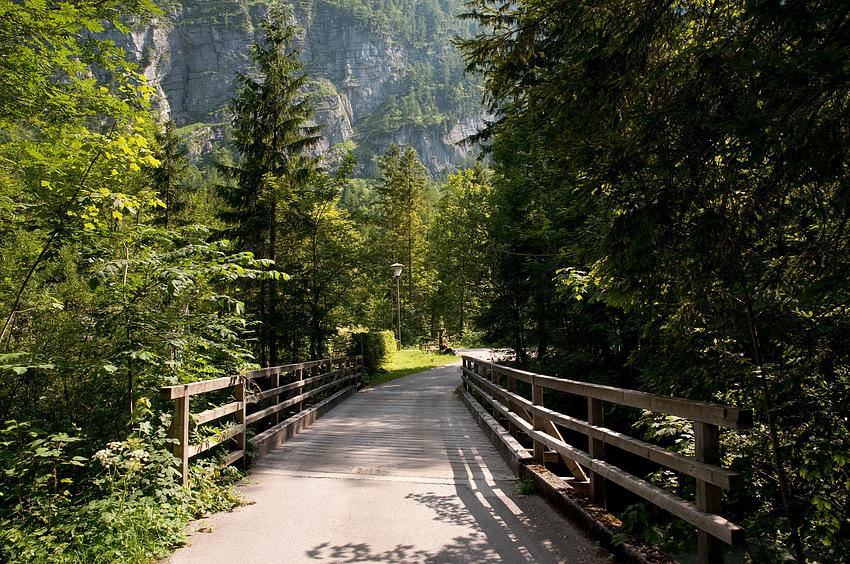 Brücke in die Natur