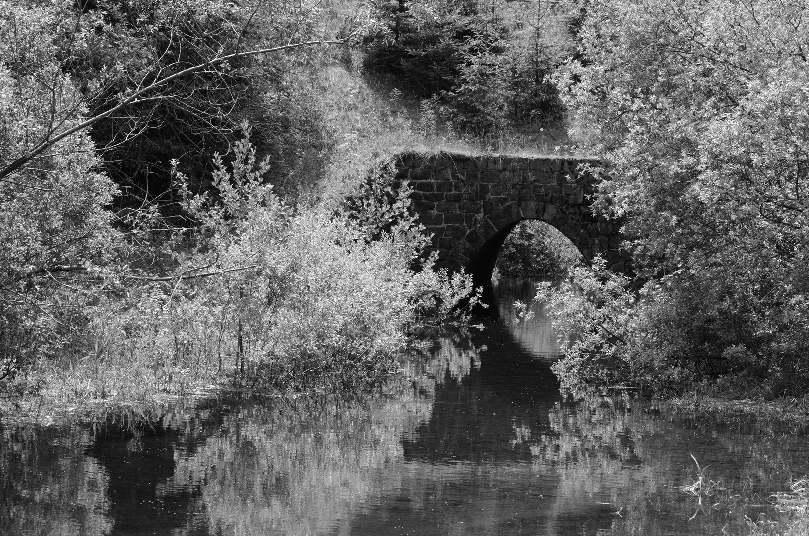 Brücke in Schwarz Weiß