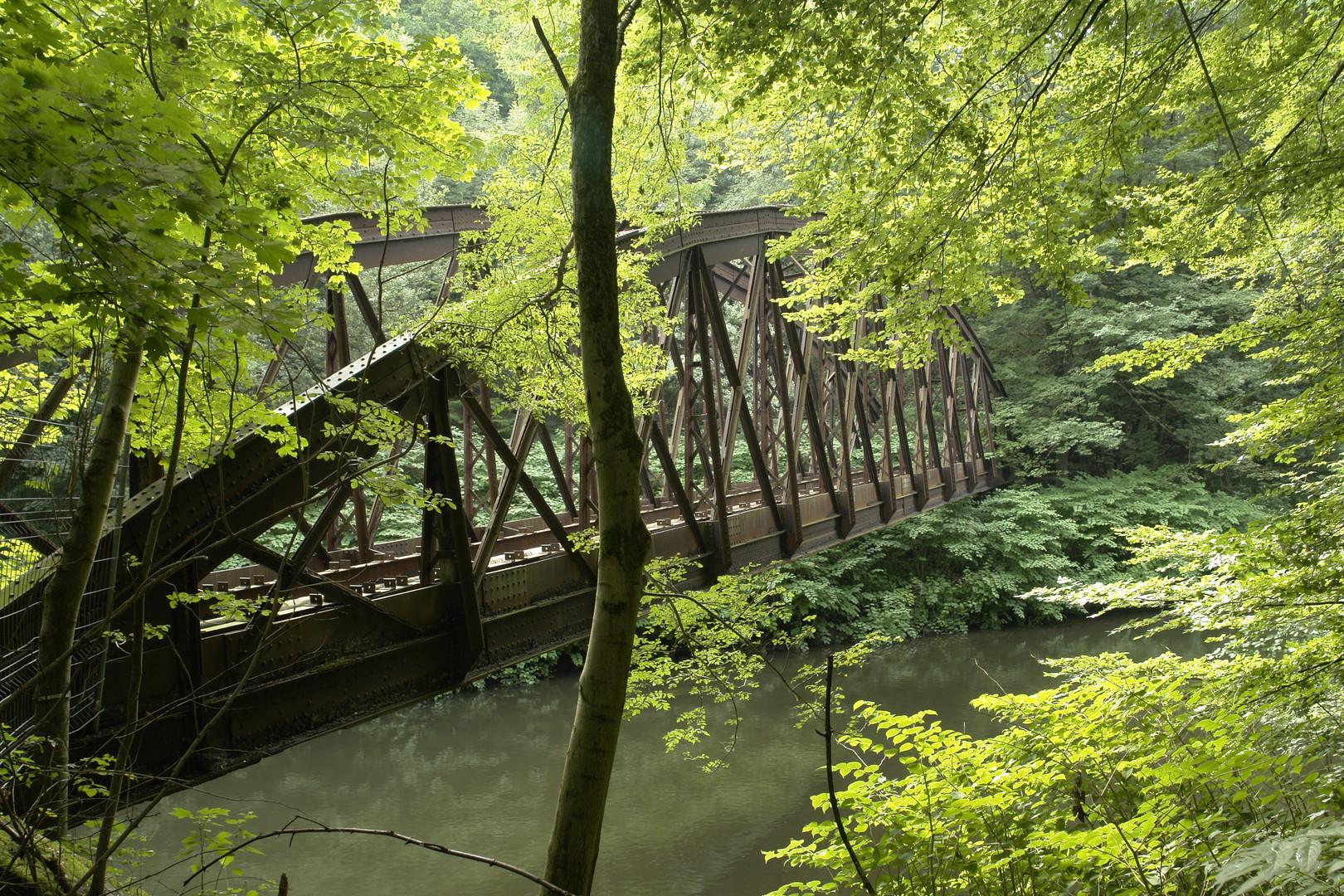 Brücke oder Naturdeko ?