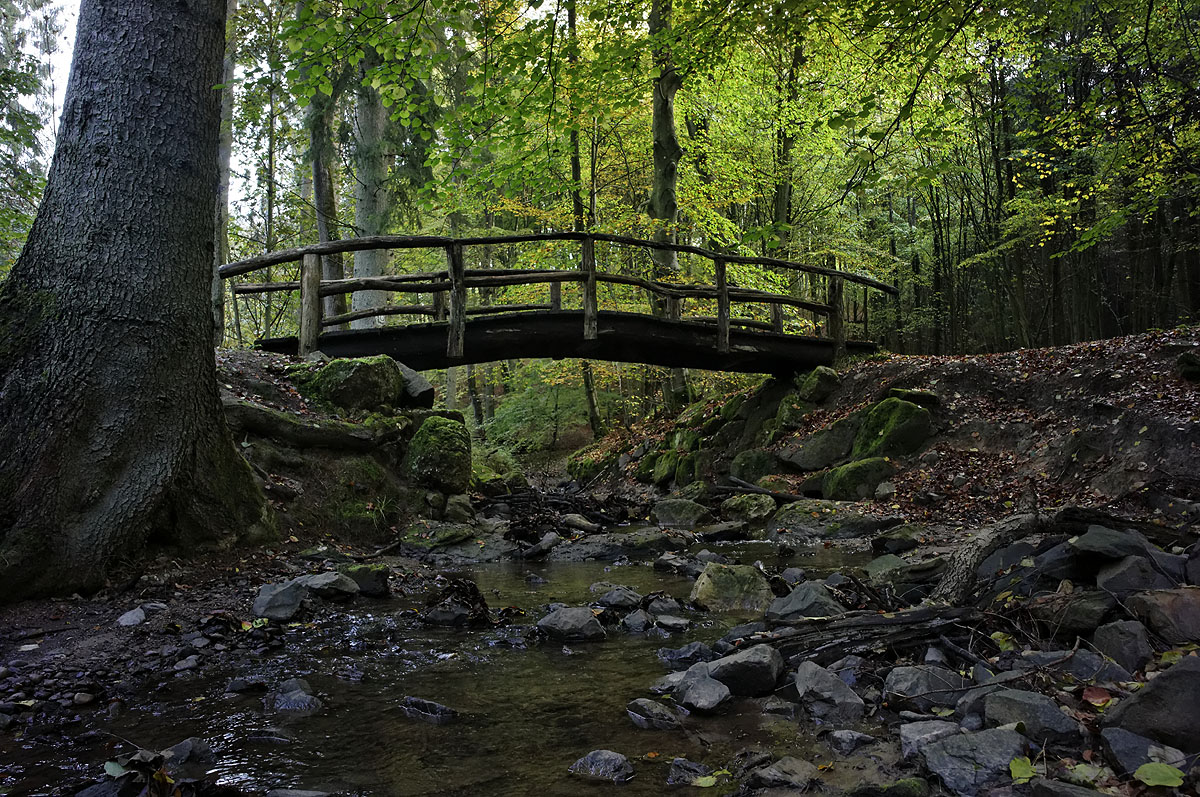 Brücke über den Netzbach