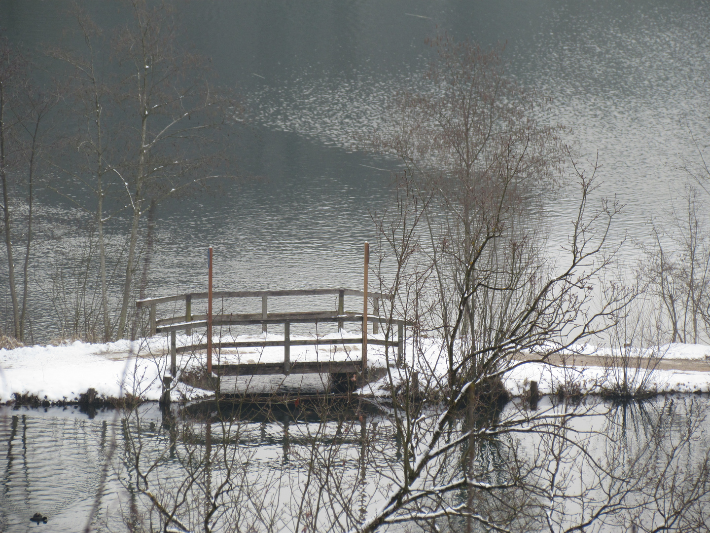 Brücke über den Wöhrsee