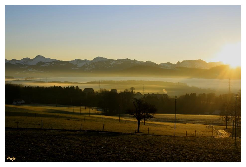 Brume du matin sur la campagne de Savigny