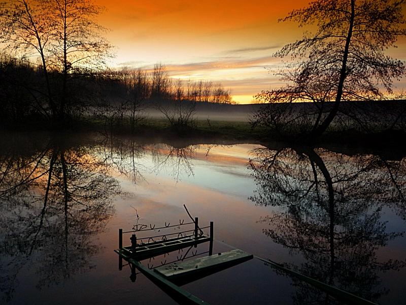 Brume du soir sur l'étang