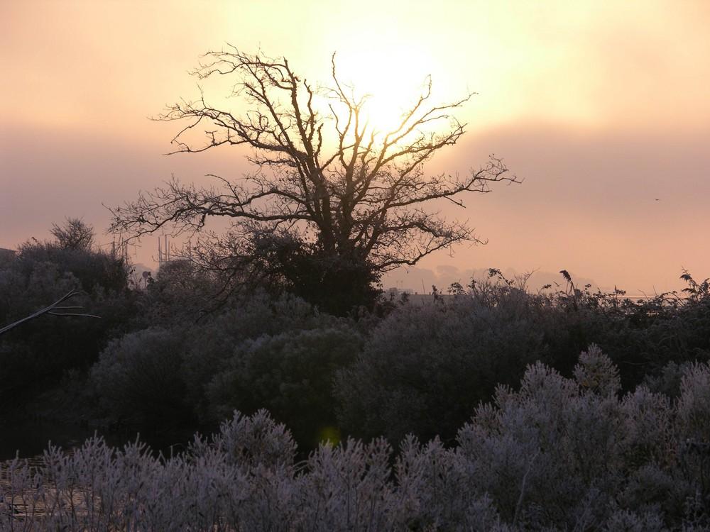 brume givrante et levé du soleil à Andernos