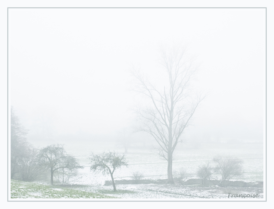 Brume hivernale