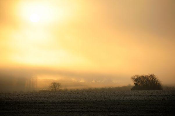 Brume matinale.