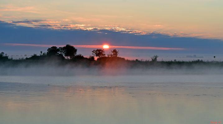 Brume sur la Charente