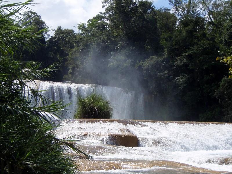 Brumisation tropicale