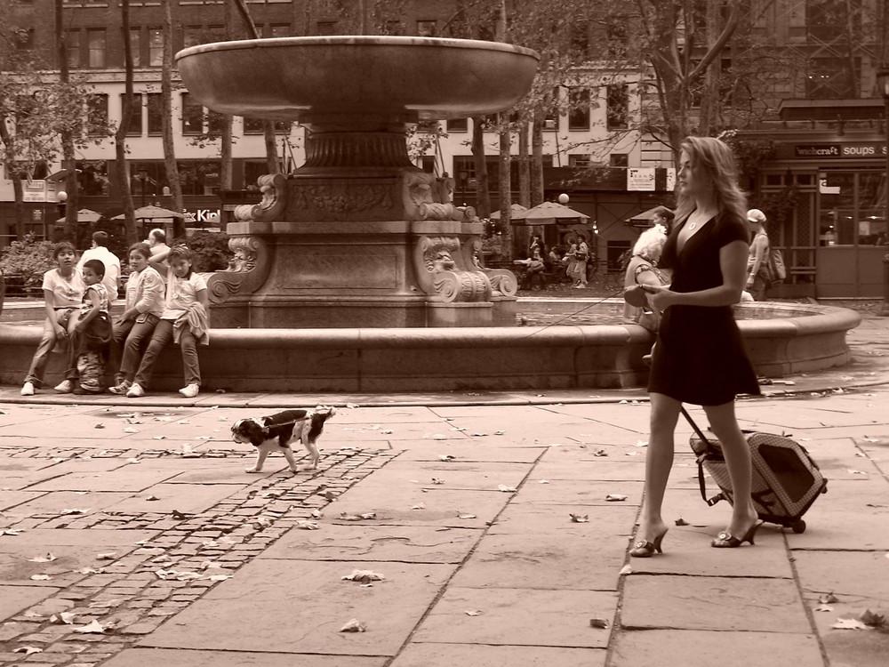 Brunnen im Bryantpark in New York