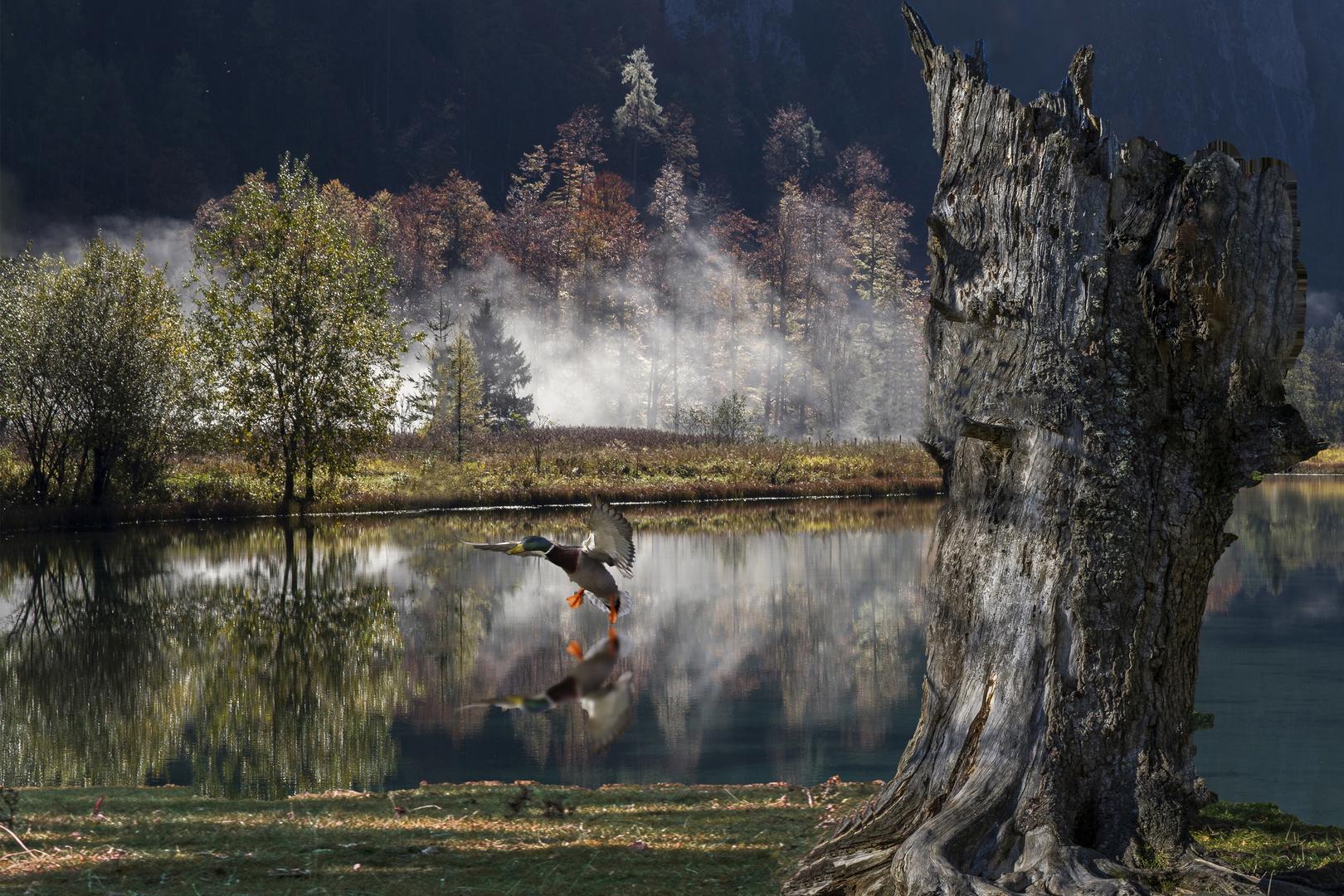 Brunnsee