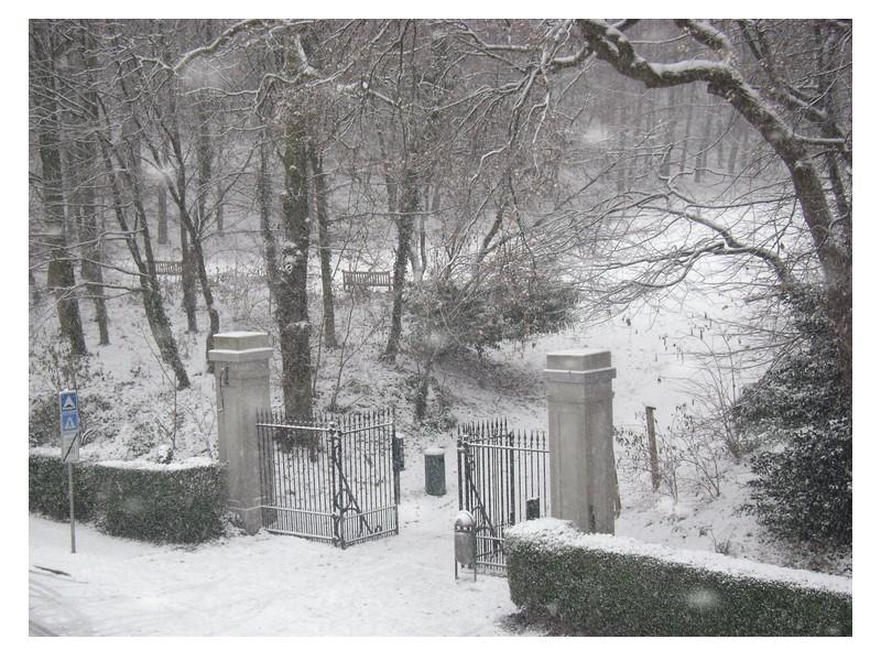 Brussels, winter 2010