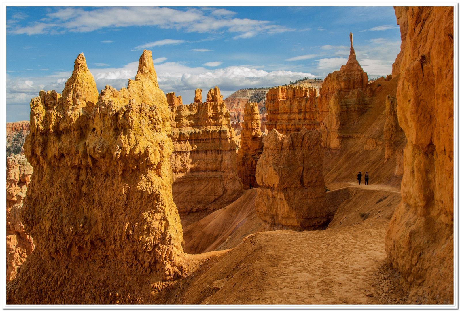 Bryce Canyon Detail 1