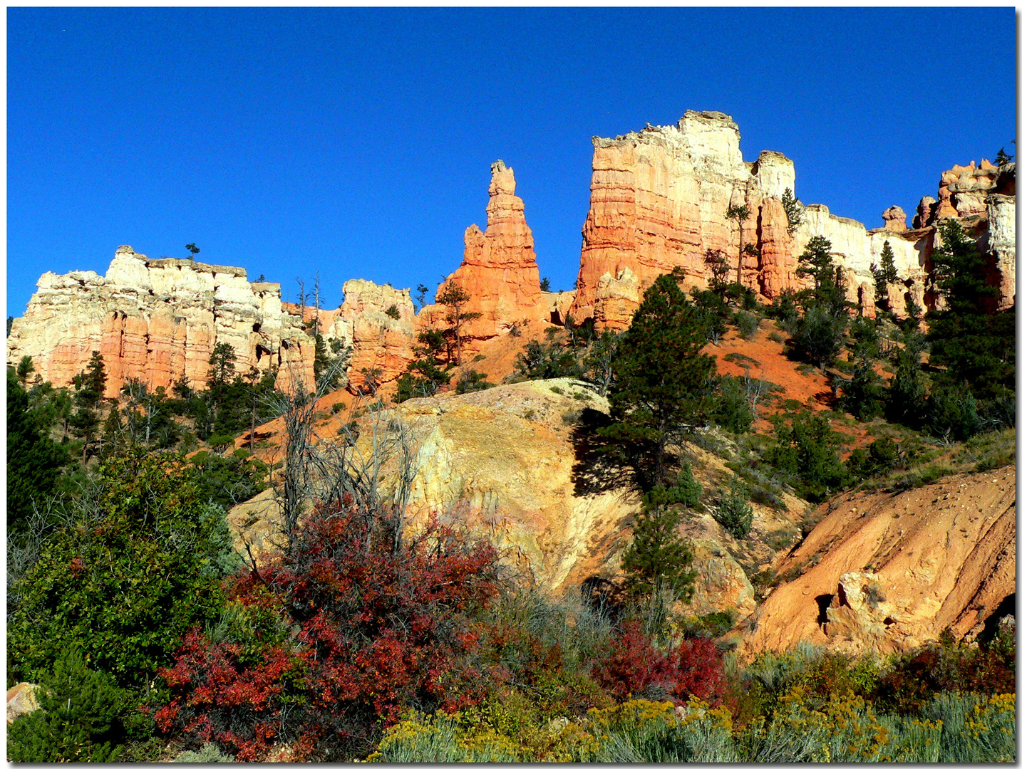 BRYCE Canyon Herbst