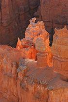 Bryce Canyon im Morgenlicht