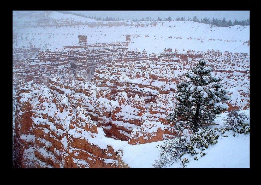 Bryce Canyon - in heavy snow -