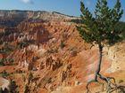 Bryce Canyon in Utah