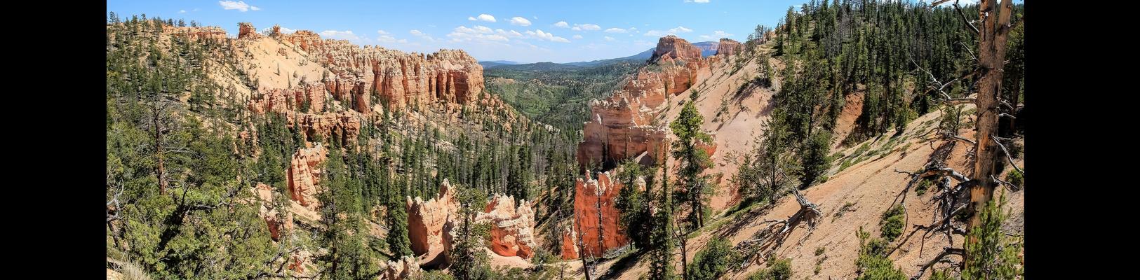 Bryce Canyon IV
