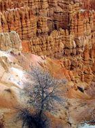 bryce canyon, mon préféré