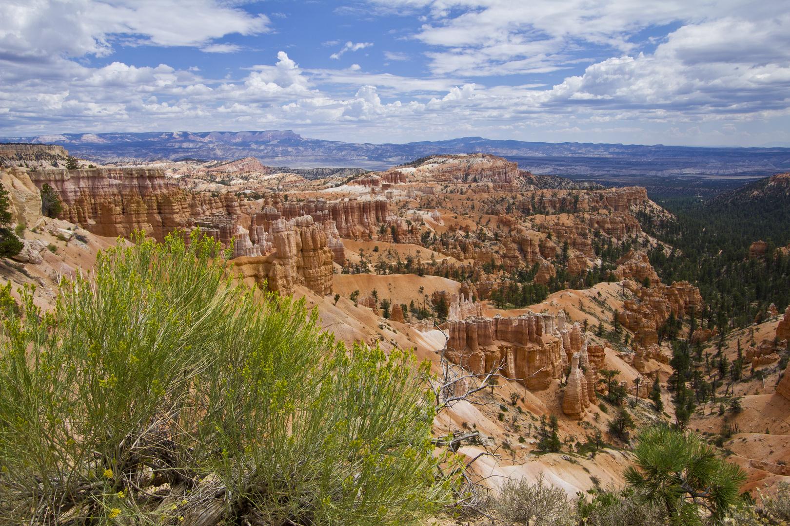 Bryce Canyon Nationalpark - Amphitheater, Utah (USA)